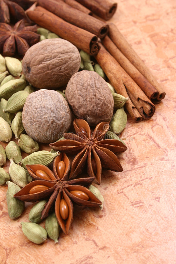 Free Spices Royalty Free Stock Photography - 2171627