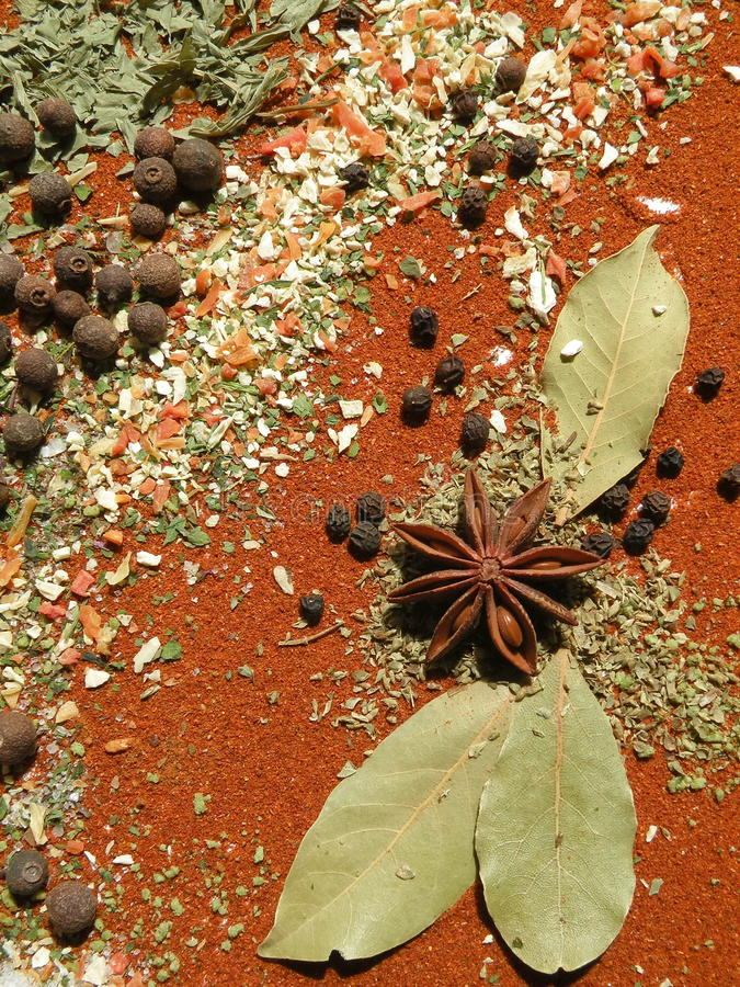 Download Spices stock photo. Image of plant, green, closeup, pattern - 24756608