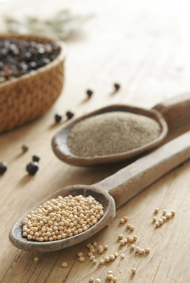 Free Spices Royalty Free Stock Images - 5439379