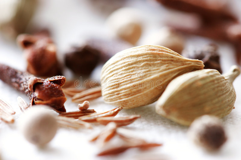 Download Spices stock image. Image of coriander, herb, gourmet, preperation - 985029