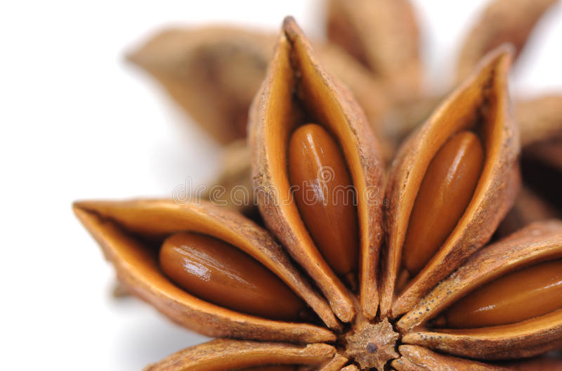 Download Spices,anise stock photo. Image of cuisine, celebration - 26810322