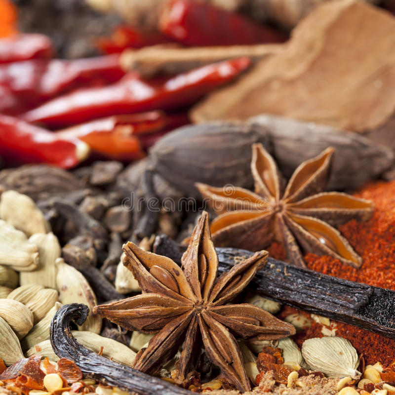 Download Spices Background stock image. Image of paprika, curry - 26421161
