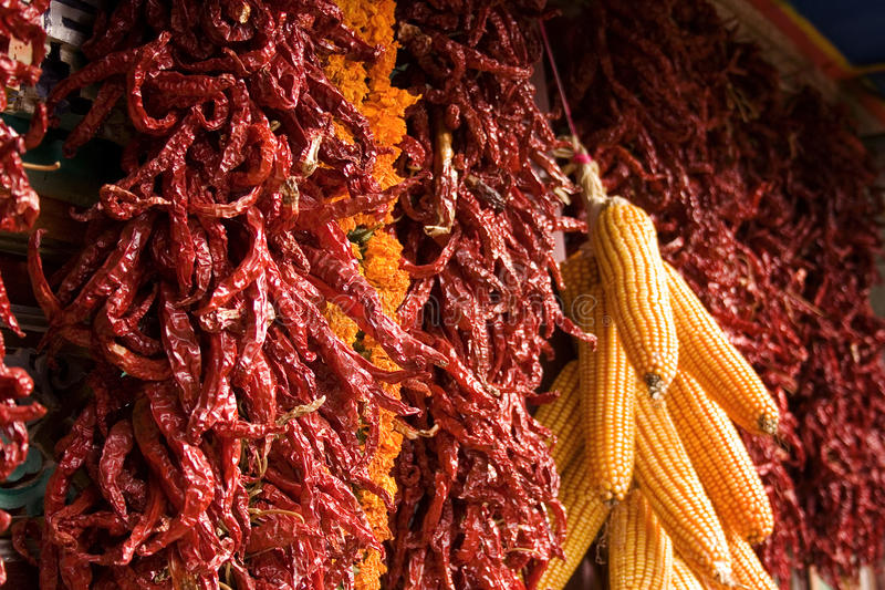Spices and corn on a wall stock photos