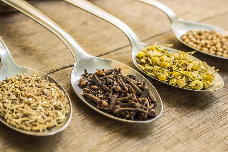 Spices and herbal tea ingredients on spoons. Spoons full of spices and herbal tea ingredients (coriander seeds, cloves, dry chamomile flowers and fennel royalty free stock photography