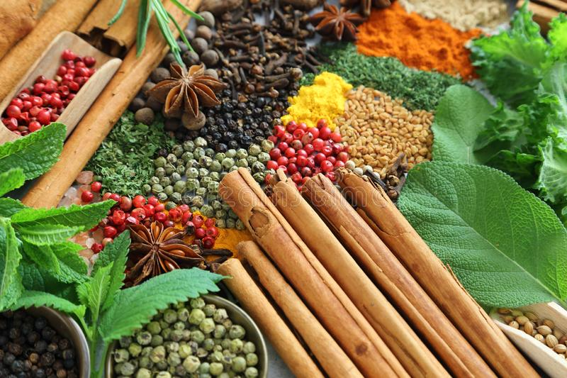 Spices and herbs. stock images