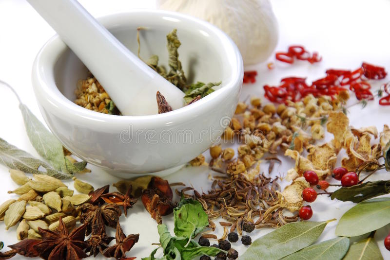 Dried Spices and herbs with mortar. On white background stock image