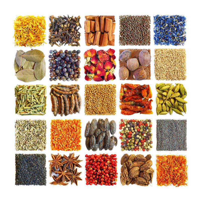 Spices and seasonings in square composition. Cut out of multi colored spices and seasonings in a large image stock images