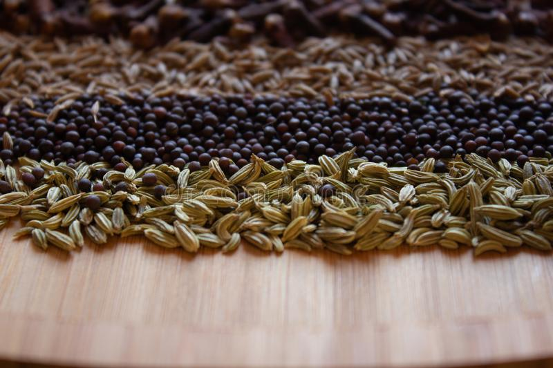 Spices and seeds commonly used in indian cuisine royalty free stock images