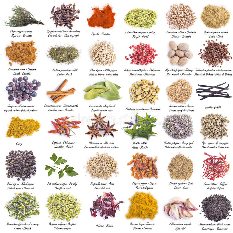 Spices set isolated on a white background stock image