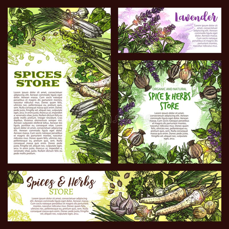 Spices And Herbs Farm Store Vector Sketch Poster Stock Vector