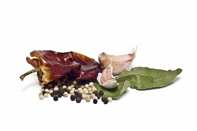 Spices to season food. stock photography