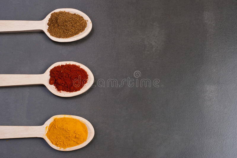 Spices. Turmeric, tandoori and garam masala on wooden spoons stock image