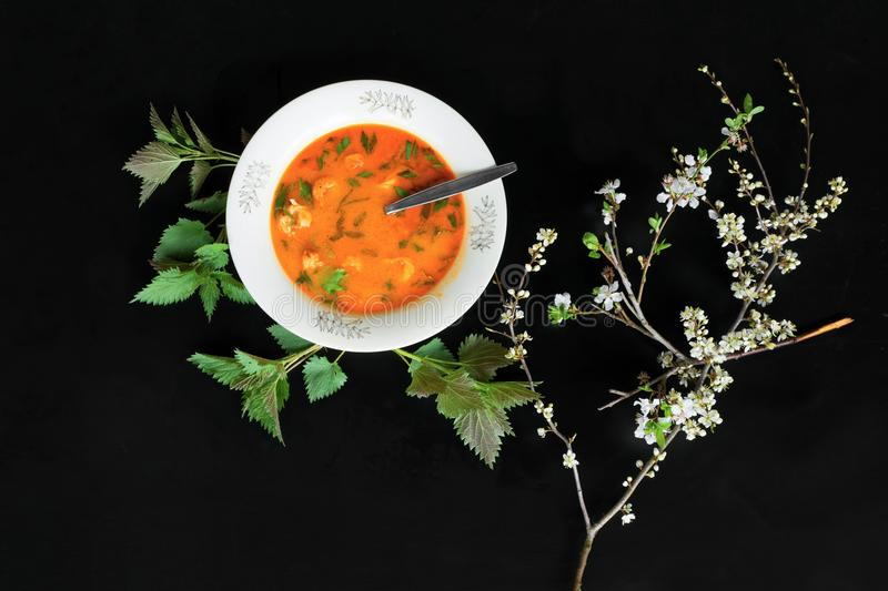 Spicy asian soup with chicken meat, flowers and herb royalty free stock photos