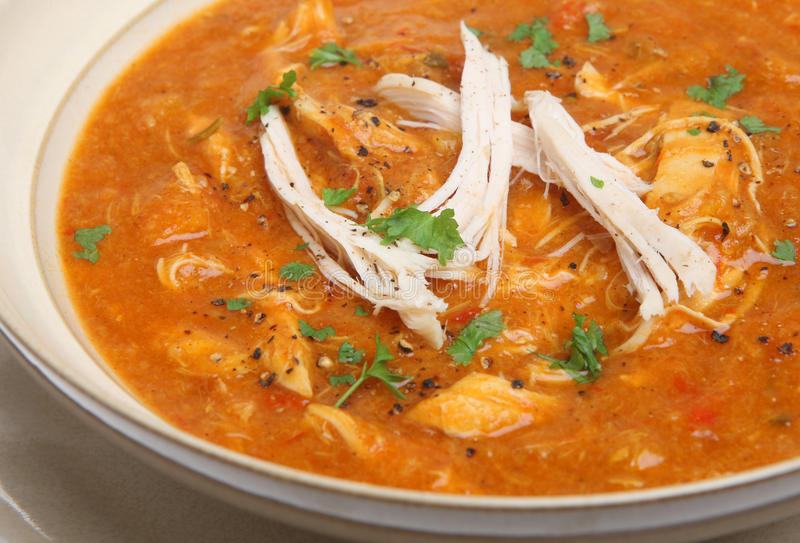Spicy Chicken Soup royalty free stock images