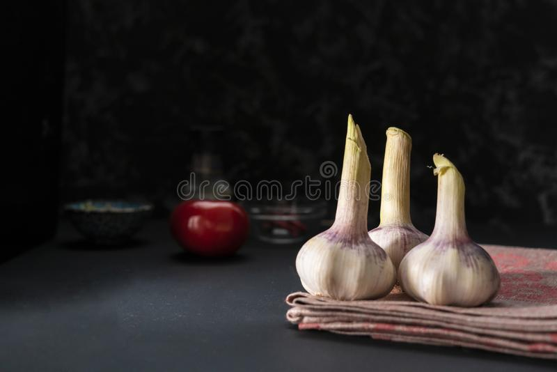 Spicy dry garlic on a dark table, asian food, ground hot pepper on the surfaces. Spicy dry garlic on a dark table, asian food, ground hot pepper on the surface royalty free stock images