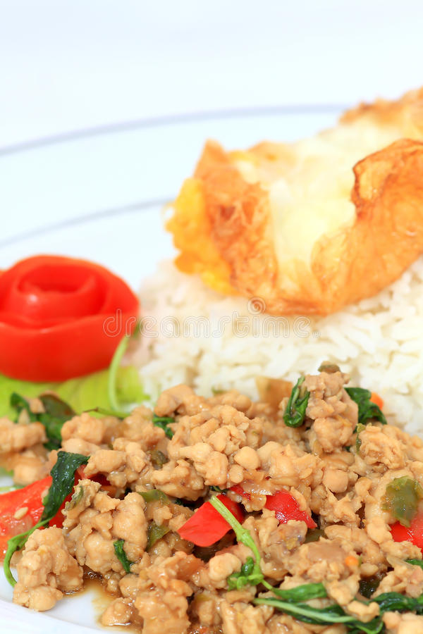 spicy food, stir fried chicken whit basil on rice stock photos