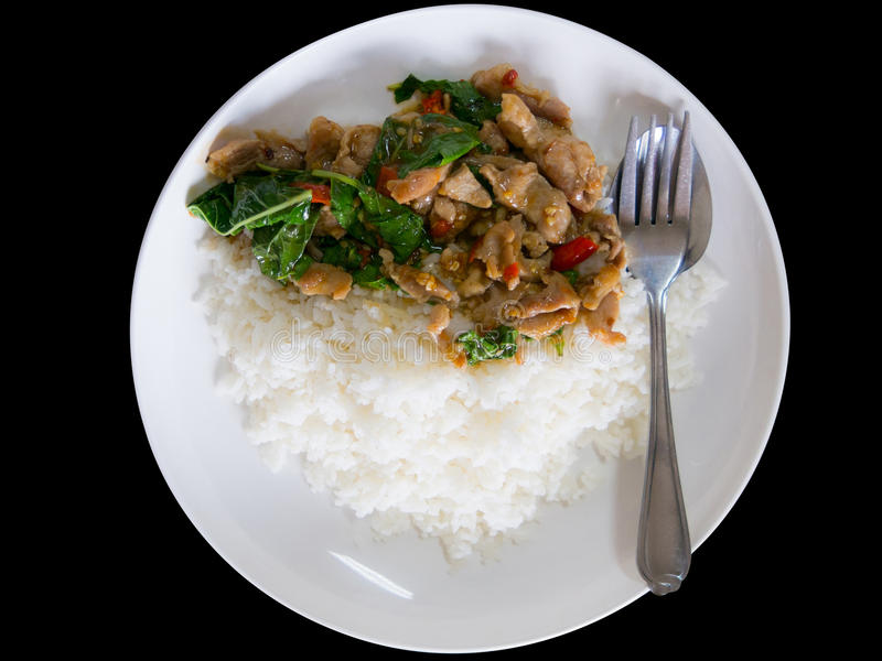 Spicy fried pork with basil leaves served with jasmin rice. Spic royalty free stock image