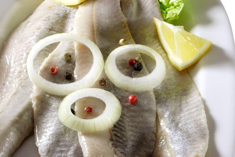 Spicy herrings royalty free stock image