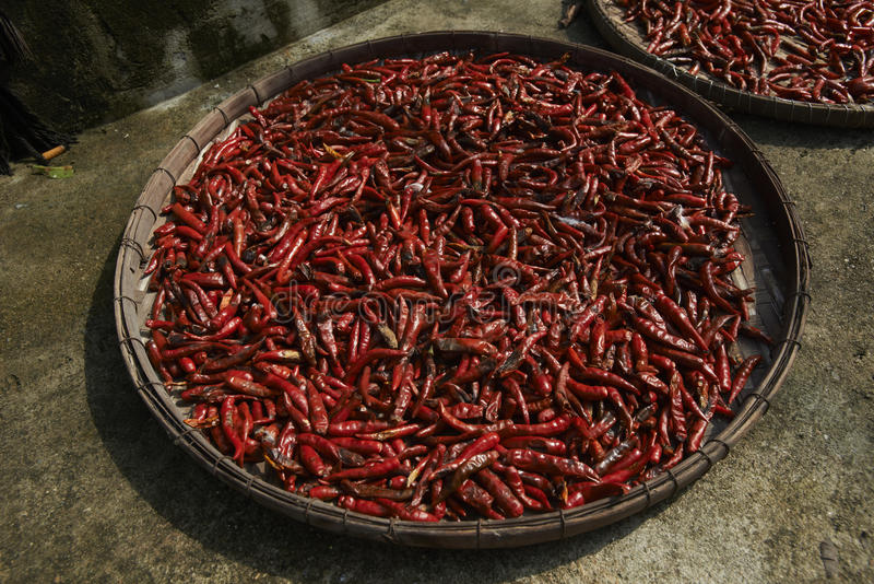 Spicy Peppers In Bangkok Market Stock Photos