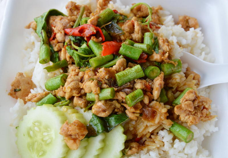 Spicy stir fried chicken with basil leaf on rice in foam box for take home royalty free stock photography