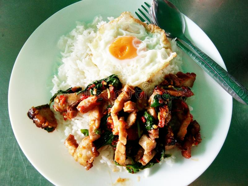 Spicy stir fried crispy pork with basil leaf and with a fried egg atop the jasmine rice royalty free stock photo