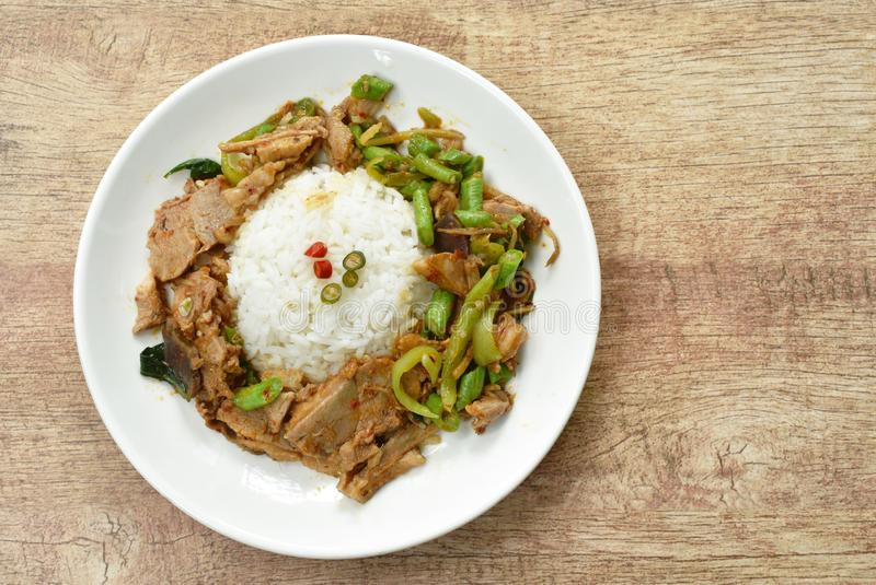 Spicy stir fried duck meat curry on rice in plate royalty free stock photos