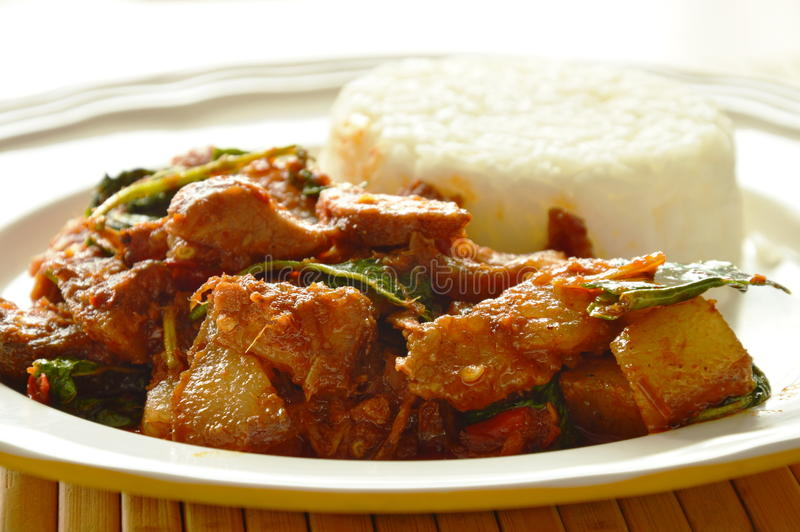 Spicy stir fried roasted pork curry with herb eat couple with rice on dish royalty free stock photography