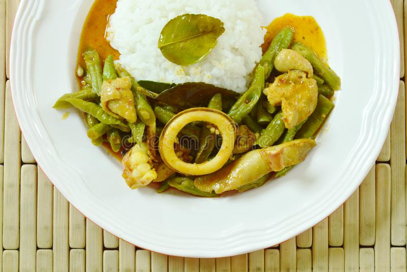 Spicy stir fried squid and chicken with yard Chinese bean in curry on rice. Spicy stir fried squid and chicken with yard Chinese bean in curry on plain rice royalty free stock image