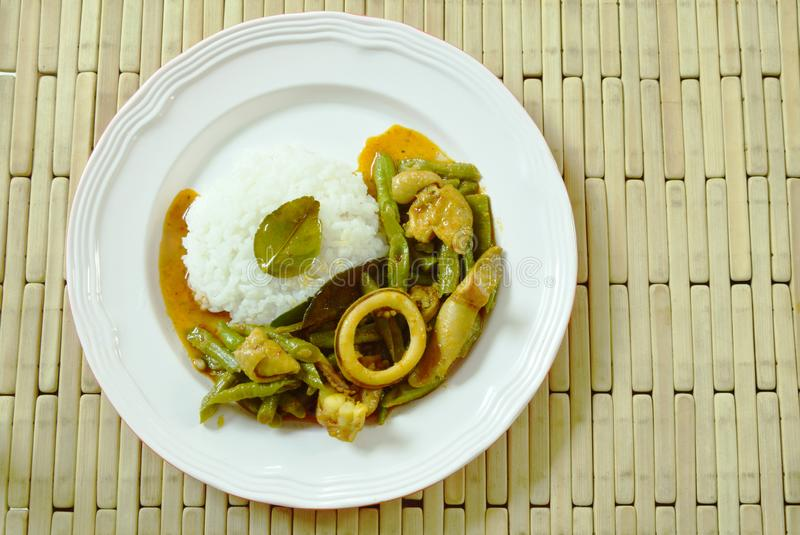 Spicy stir fried squid and chicken with yard Chinese bean in curry on rice. Spicy stir fried squid and chicken with yard Chinese bean in curry on plain rice stock photos
