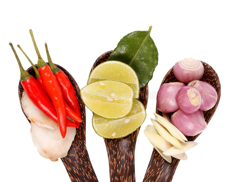 Spicy thai food ingredients stock photo image of kitchen download spicy thai food ingredients stock photo image of kitchen lemongrass 25475530 forumfinder Image collections
