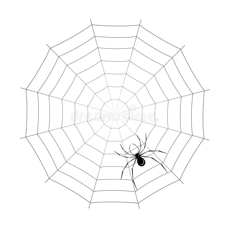 Download Spider stock vector. Image of isolated, black, image - 23302064