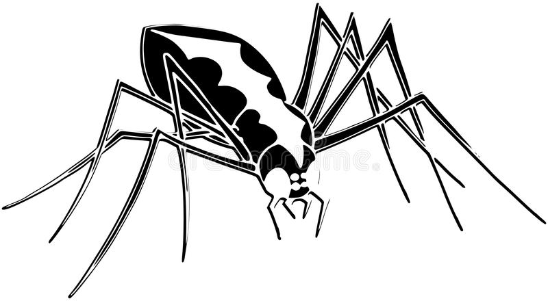 Download Stylized Spider Isolated In Black And White Royalty Free Stock Photos - Image: 38255208