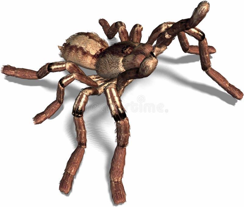 Download Spider attacks stock illustration. Illustration of horror - 693613