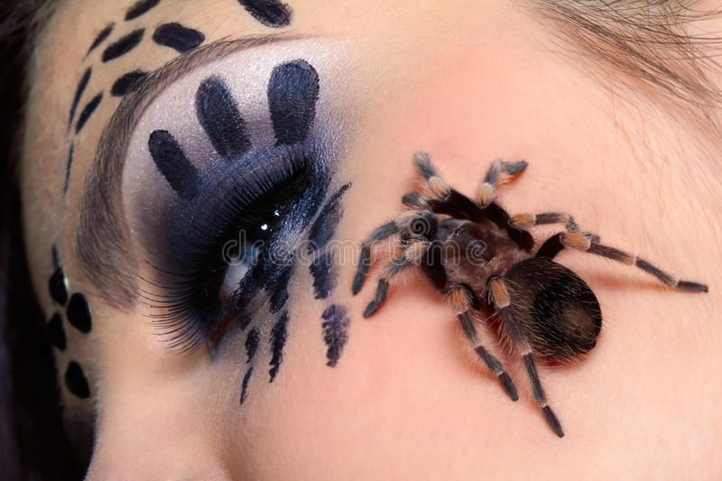 Spider Brachypelma Smithi On Girl S Cheek Royalty Free Stock Images