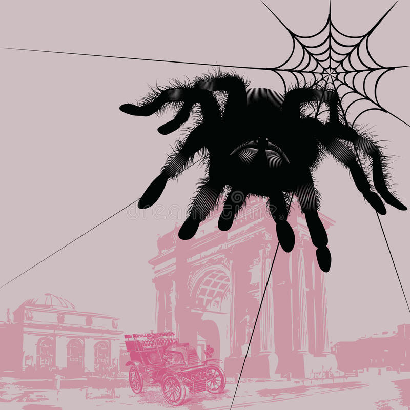 Download Spider And Car Stock Images - Image: 10578794