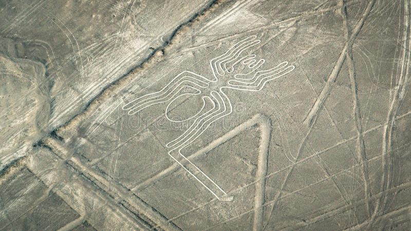 Spider figure as seen in the Nasca Lines, Nazca, Peru royalty free stock photos