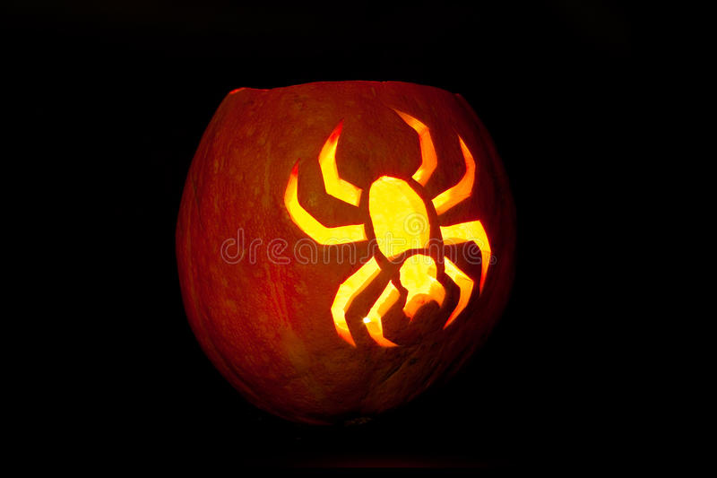 Spider Halloween pumpkin stock photos