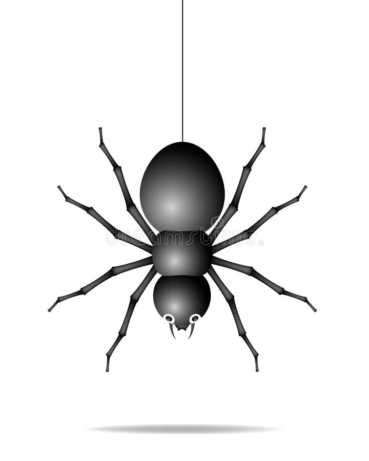 Download Spider Hanging On A Gossamer Thread Royalty Free Stock Photography - Image: 23550087