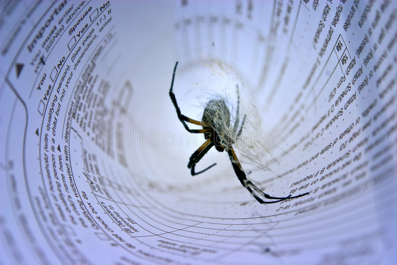 Download Spider in income tax form stock photo. Image of animal - 4453834