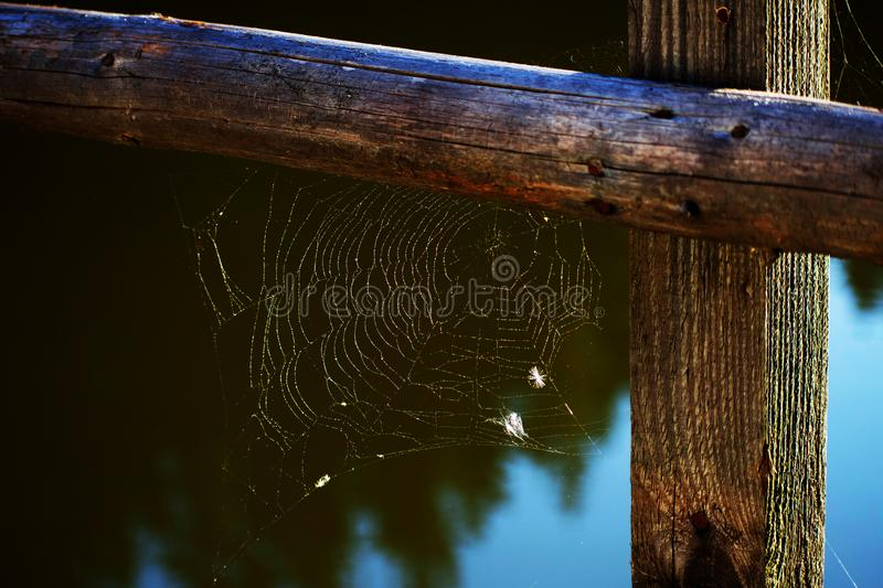 Spider`s web on the corner of the wooden banisters royalty free stock images