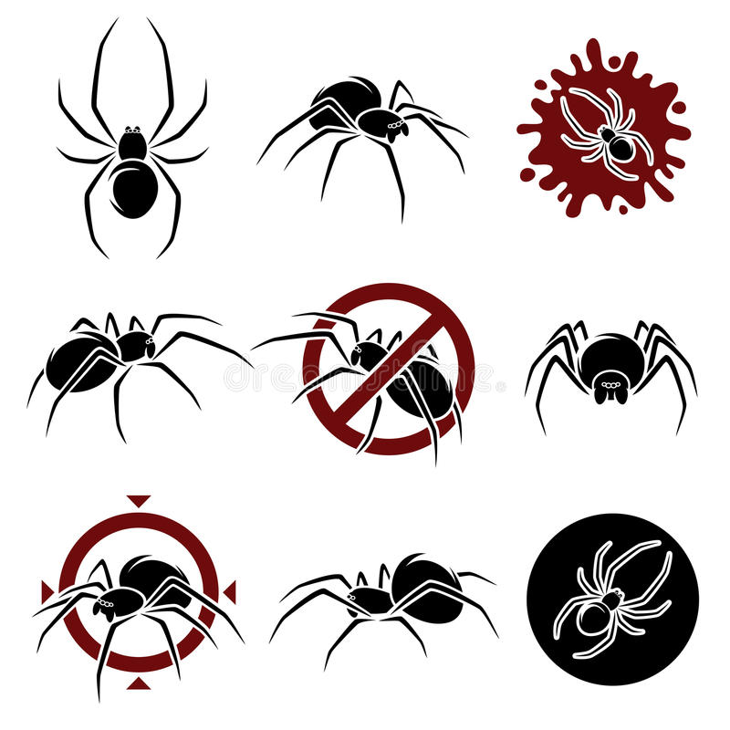 Free Spider Set. Vector Royalty Free Stock Photography - 42307627