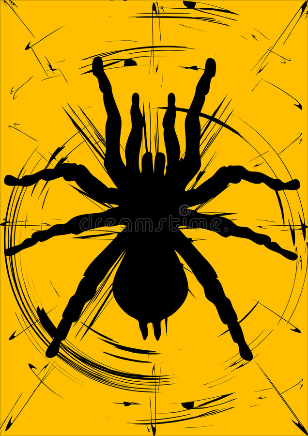 Spider silhouette stock image