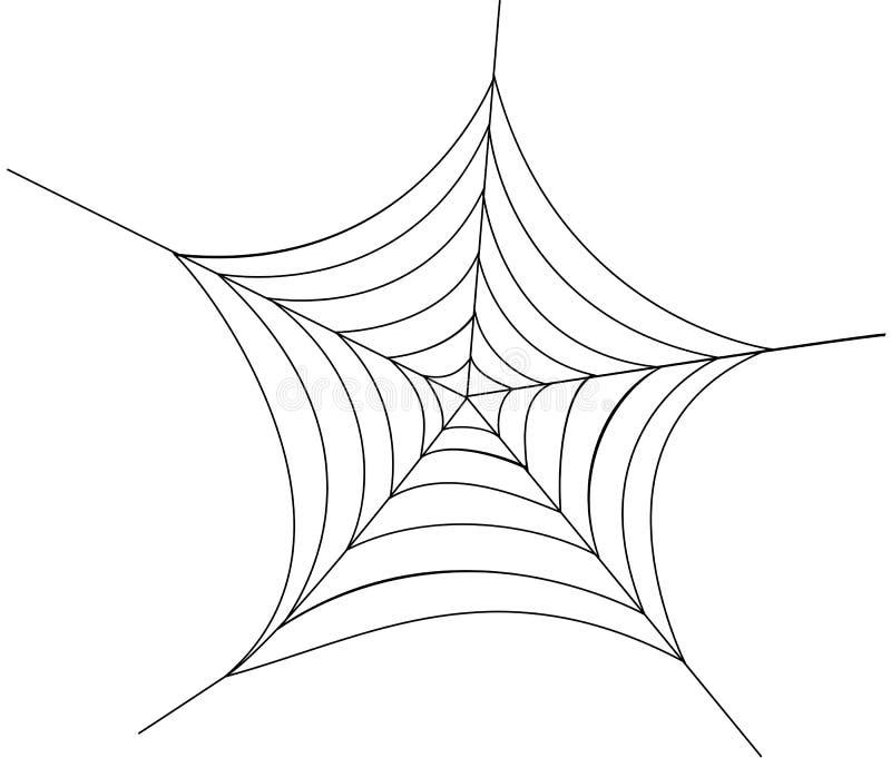 Download Spider web stock vector. Image of nature, spider, invertebrate - 13027405