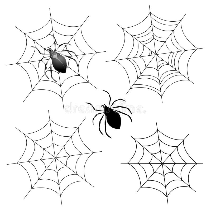 Spider web royalty free illustration
