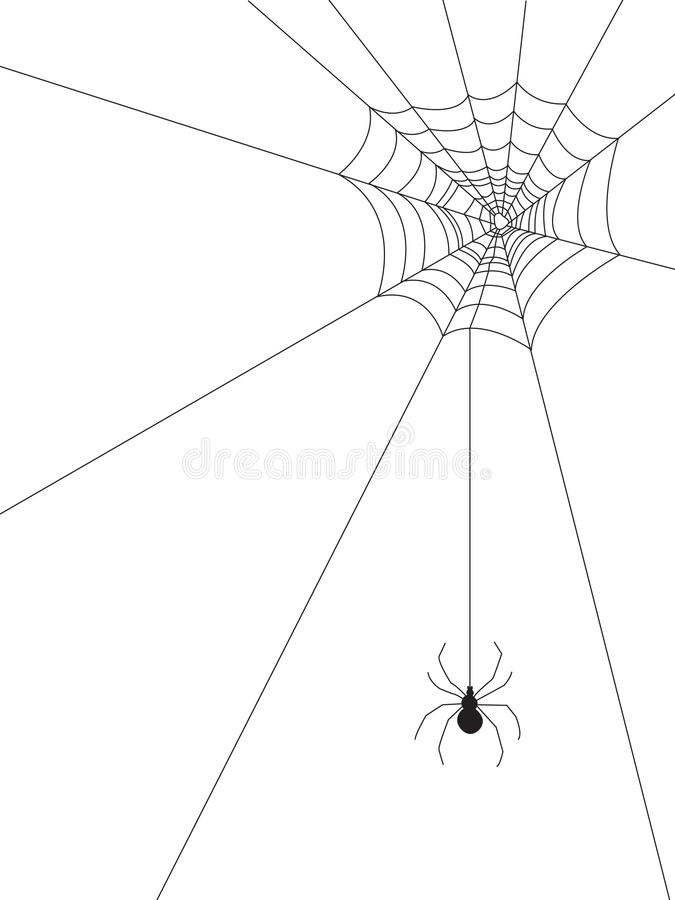 Download Spider Web stock vector. Image of background, venom, drawing - 24332157