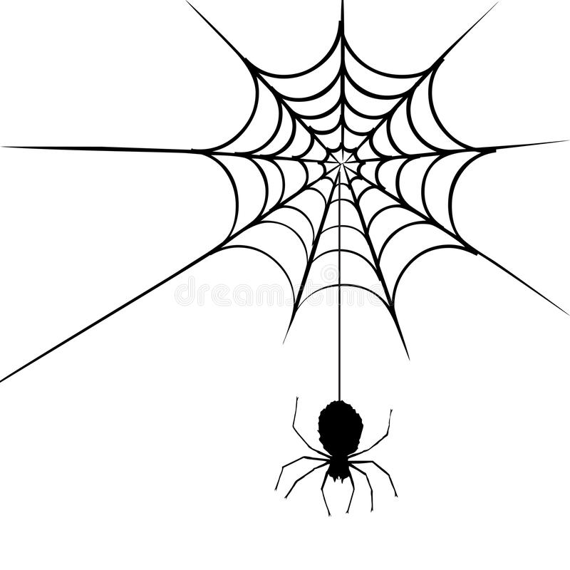 Spider web. Illustration of a spider web and spider. An additional Vector .Eps file available. (you can use elements separately