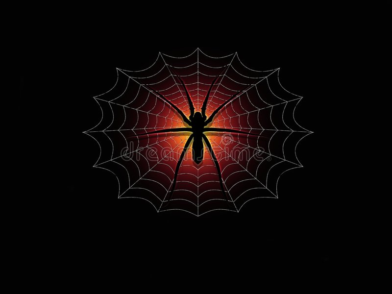 Spider & Web. Illustration of a Spider in the middle of its web royalty free illustration