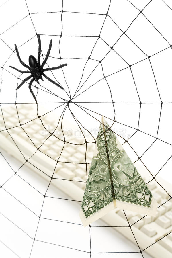 Spider Web and dollar stock photos