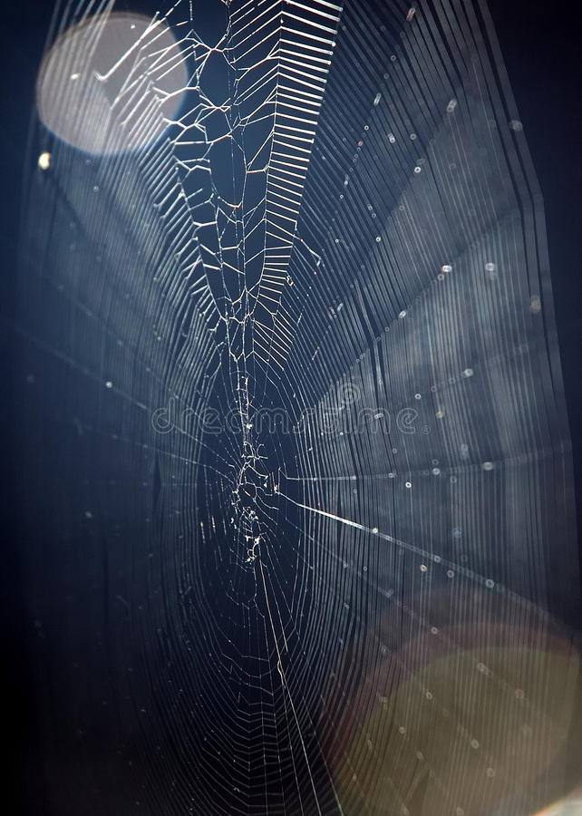 Download Spider Web And Moon Stock Photos - Image: 11129963