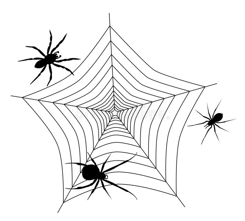 Spider Web With Three Spiders Royalty Free Stock Photography
